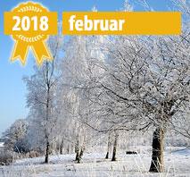Nye Online Casioner Februar 2018