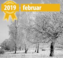 Nye Online Casioner Februar 2019